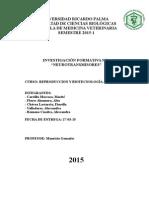 Reproduccion Ani mal 1er Informe (1)