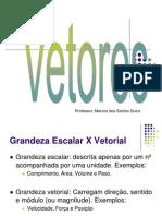 VetoresPitagoras_Portal_20140921151408.pdf