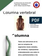 Columna Vertebral 01