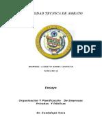 EnsayoOrganización Y Planificación   De Empresas Privadas  Y Públicas