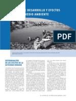 capitulo3 Niveles de desarrollo y ambiente.pdf
