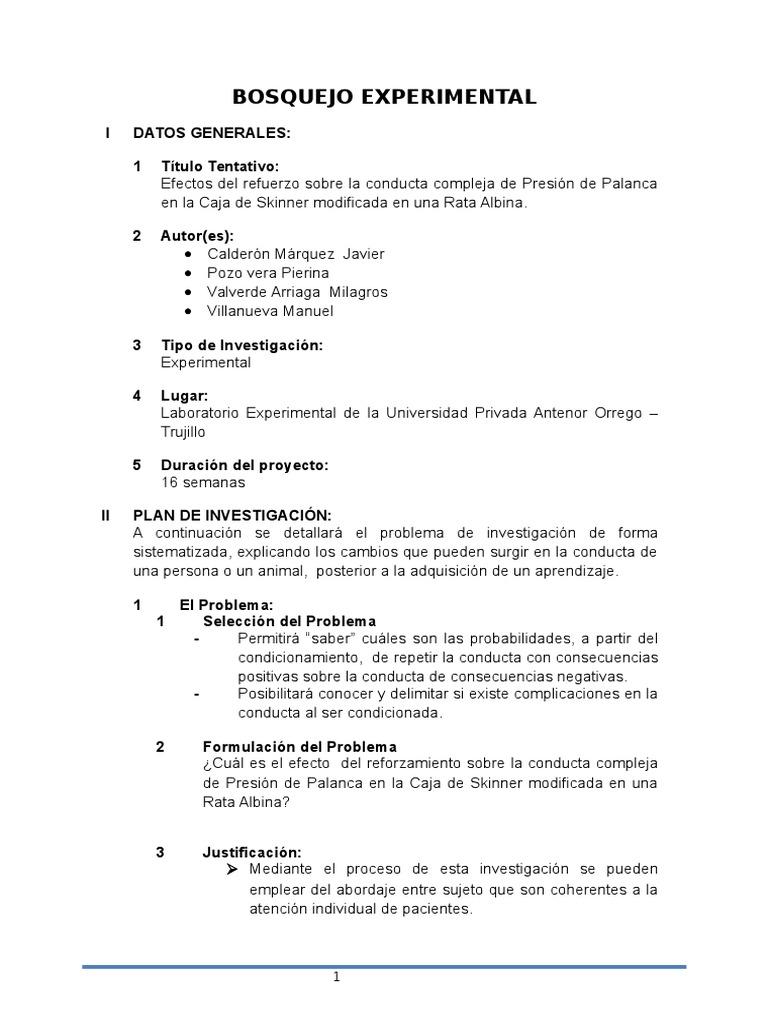 Bosquejo Expo Experimental (1)
