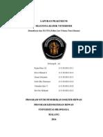 Laporan Praktikum Diagnosa Klinik Fix Kel. a3