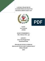 Laporan Praktikum Anfisman II