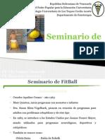 Seminario FitBall