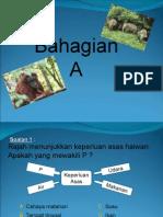 keperluan asas haiwan tahun 3