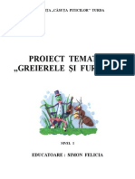 proiecttematic_greierelesifurnica