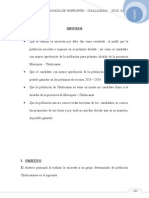 ALCALDE_D..[1].doc