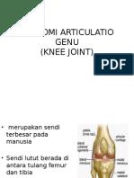 Anatomi Articulatio Genu Baru