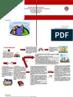 Sociedades Mercantiles. (infografia).