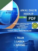 Week 7 Awal Daur Hidup.pdf