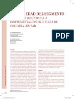 enfermedad-del-segmento-8.pdf