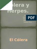 Cólera y Herpes