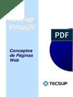 Conceptos de pag. web
