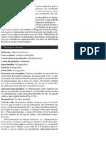 Roteiro Para Estudo - Aula Teórica 8 - Strongylus Cyathostominae e Oesophagostominae (1)