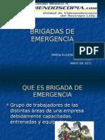 1 Brigadasdeemergencia 110608111059 Phpapp01