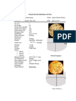 Laporan Mineral Optik Piroksen Grup