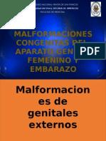 Malformaciones CongeniMalformaciones congenitas del aparato genital femenino tas Del Aparato Genital Femenino Seminario