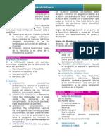 Clase 3 - Apendicectomia