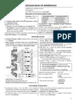 3. Molecular Basis of Inheritance