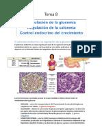 Fisioloxía Animal - Sistema Endocrino - Grao en Bioloxía (USC) - 2014/2015