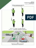 Regulementul circulatiei rutiere (anexa)