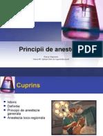 Curs 2 - Principiile Anesteziei