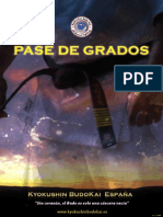 pasedegrados_budokai