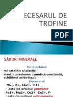 Curs 6.Necesar Minerale Vitamine