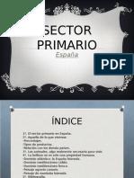 SECTOR PRIMARIO EN ESPAÑA.ppt