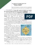 Guia 2 Bioelementos y Biomoleculas