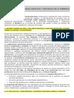 TEMA 3. Las Primeras Comunidades Agrícolas y Pastoriles en La Península Ibérica