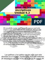 6.2 Ejemplo de Textos Descriptivos