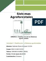 Andamio sistemas agroforestales