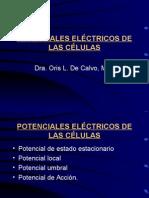 Telmeds.org 2. Potenciales Elctricos082010