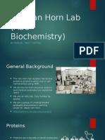 van horn lab powerpoint