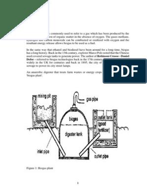 Bio Gas Seminar Report | Anaerobic Digestion | Biomass