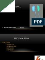 Fisiología Renal EXPO