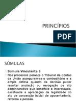 Slides Princípios - Súmulas e Jurisprudencias