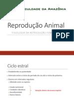 Reprodução II F.pdf