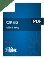 ccnavoice