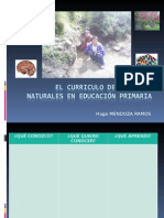 PPT CLASES.ppt