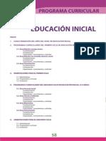 DCN INICIAL.pdf