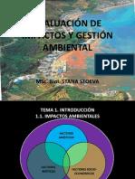 1-EIA-PDF.pdf
