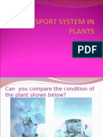 Form 3 Transport System in Plants