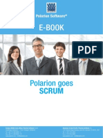Polar i on Goes Scrum
