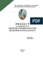 proiect sib cseh jeno.doc