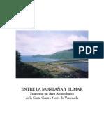 Patanemo