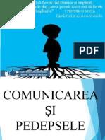 comunicareeficienta-140128135510-phpapp01