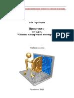 Практикум 2012-2013 v11 По Электронной Коммерции